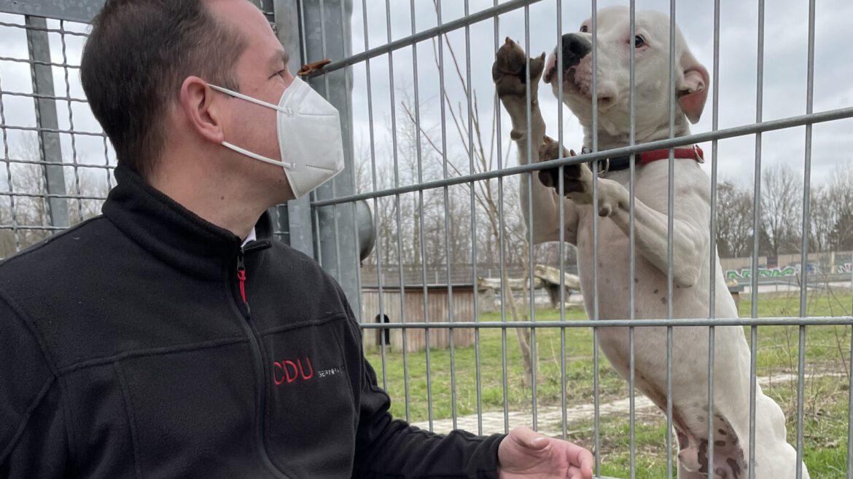 Tim Mithöfer Tierheim Tierschutz Langenhagen